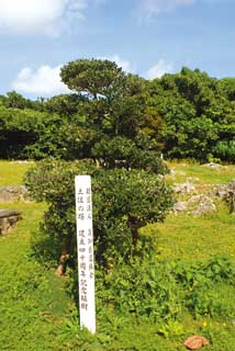 土佐之塔(高知県)